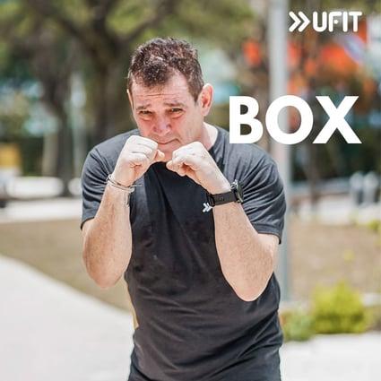 BOX-square-2