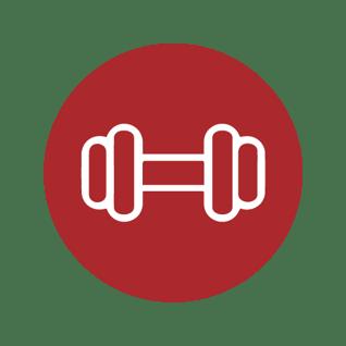 Icon 3 - Highly Individualised Program