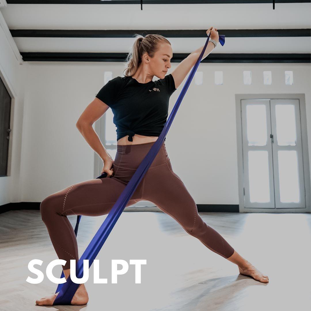 Sculpt_UFIT